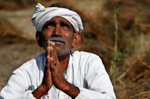 mediators are damaging farmers