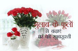 increase-the-beauty-of-the-house-with-rose-flowers