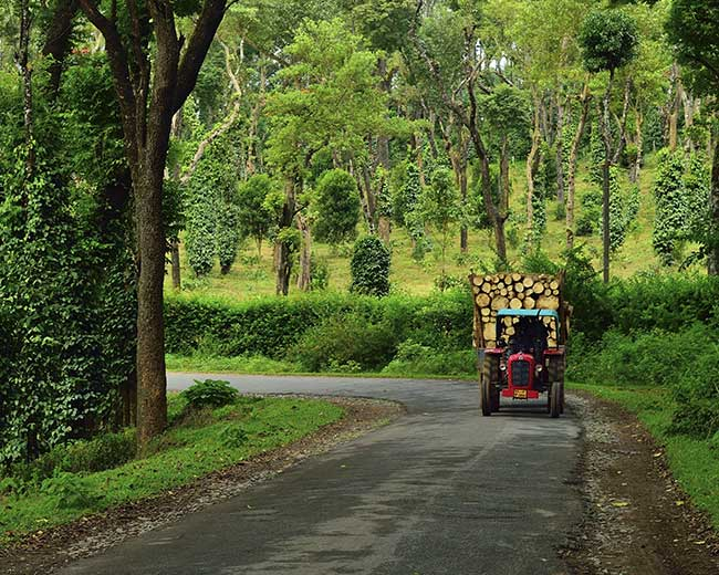 Coorg is known as the Scotland of India