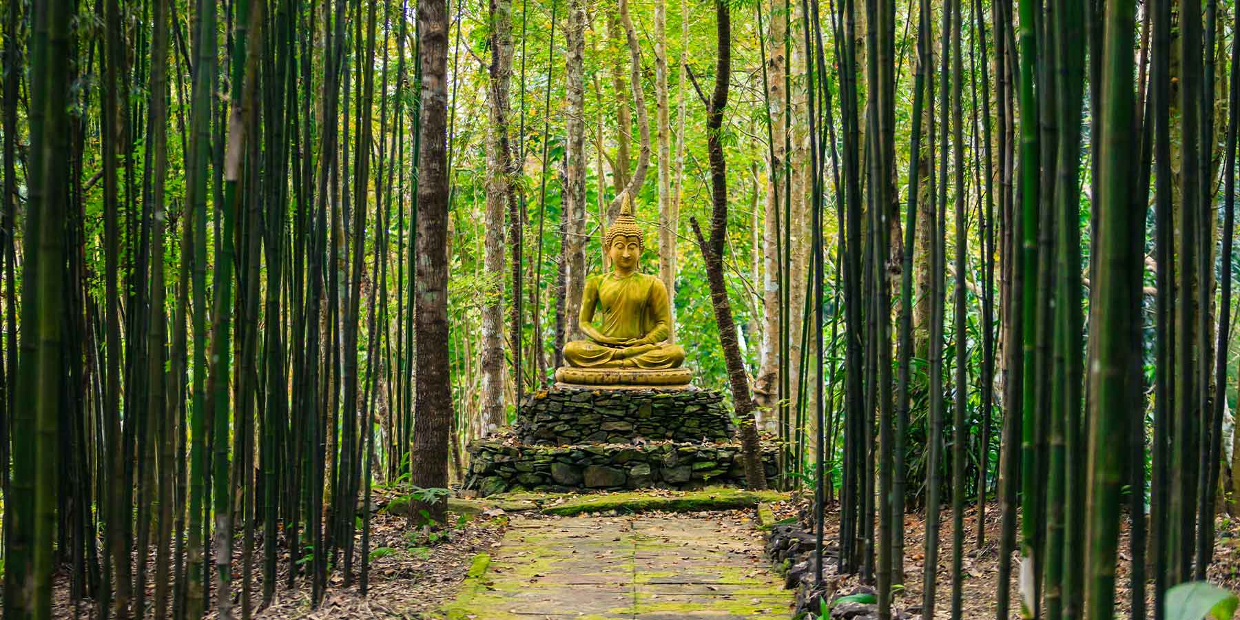 Gautama Buddha: The Eternal One