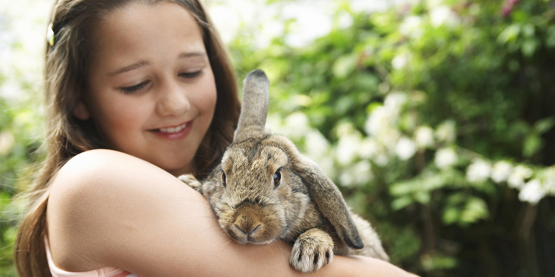 How Pets can Improve your Mental Health