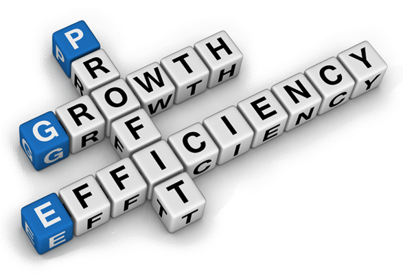 Growth or Profitability or Both – What Makes A Business Click?