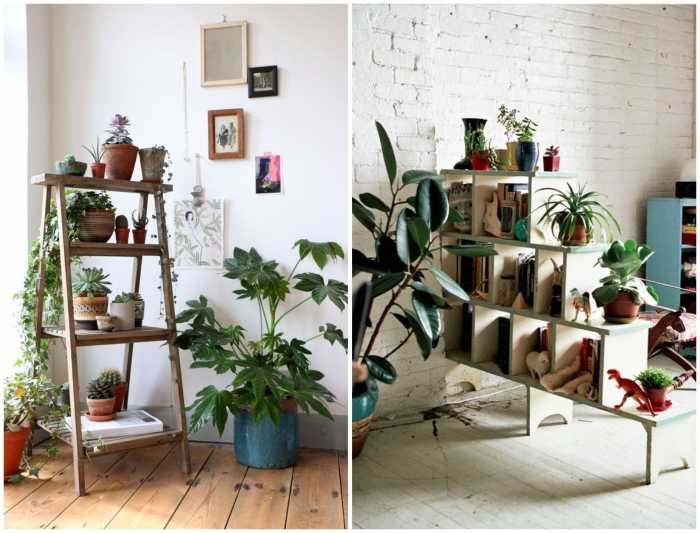 Go Green Home Decor Ideas With These Exotic Plants
