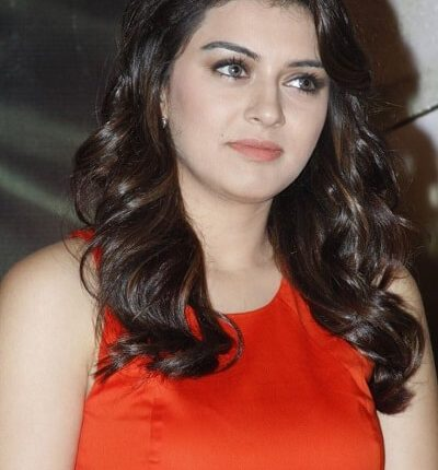 Hansika Motwani Biography, Family, Age, Height, Weight, Husband, Photos (4)