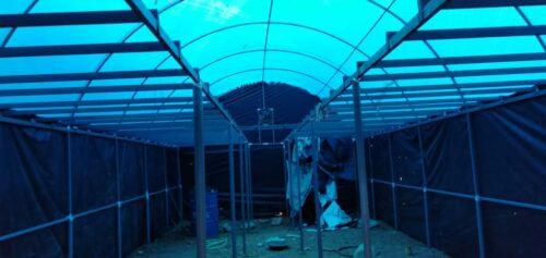 Os alunos ganham Rs 76000 / mês cultivando cogumelos em um quarto individual! 6