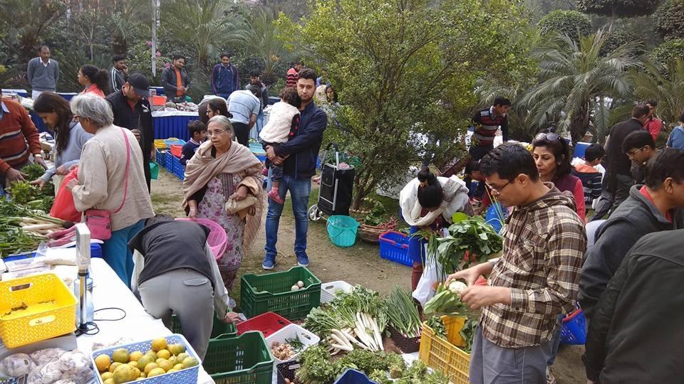 Residentes do Gurugram estão ajudando agricultores orgânicos a trazer produtos para você 7