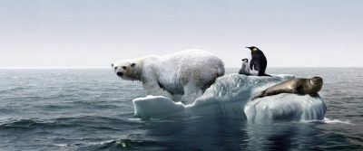Global Warming and effect on Tourism