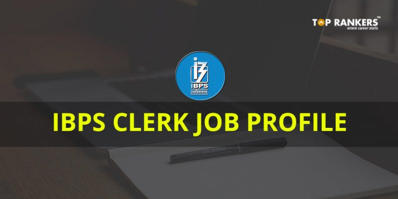 IBPS Clerk Job Profile