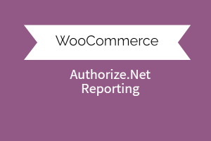 Authorize.net Reporting